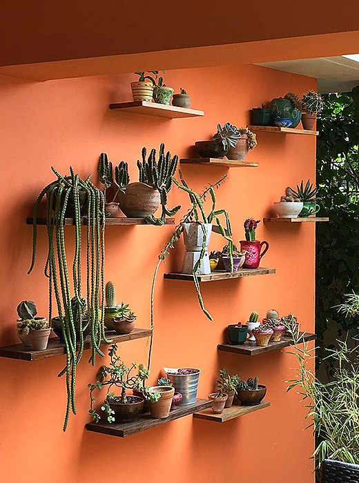 In the garden of Beatriz Santacana's home and studio, a wall arrangement features items she's pulled from the trash, including a rusted but still refined Bialetti coffeemaker, and her own ceramic creations. Photo by Cate La Farge Summers.
