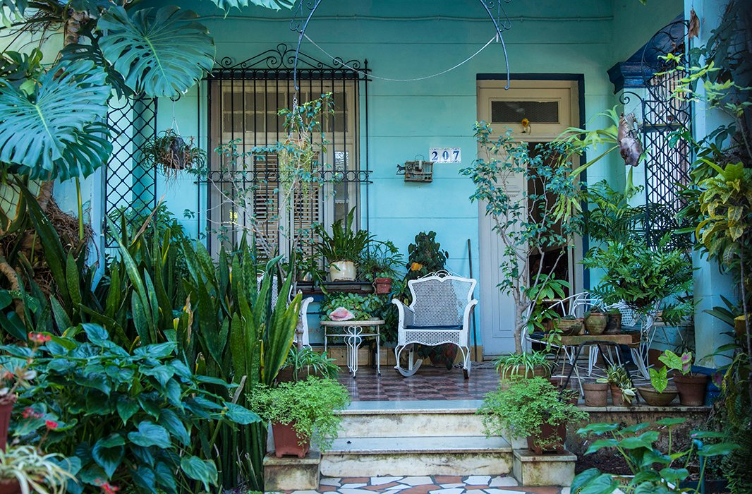 A common sight in Havana's neighborhoods, especially those of Vedado and Miramar: saturated paint colors almost obscured by overflowing tropical leaves, ceramic tile floors softened by thousands of footsteps. Photo from Getty Images.