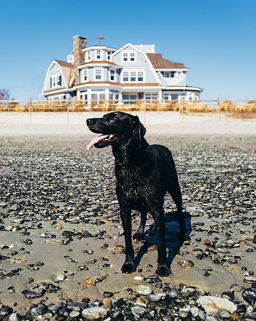 Most of Kennebunkport's beaches are dog-friendly, even during the busy summer season. Poppy wholeheartedly approves.