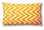 Kasari 12x20 Outdoor Pillow, Orange