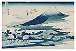 Katsushika Hokusai, Umezawa Manor