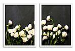 Mason Stefl, Floral Study V Diptych