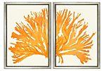 Miranda Baker, Orange Coral Diptych