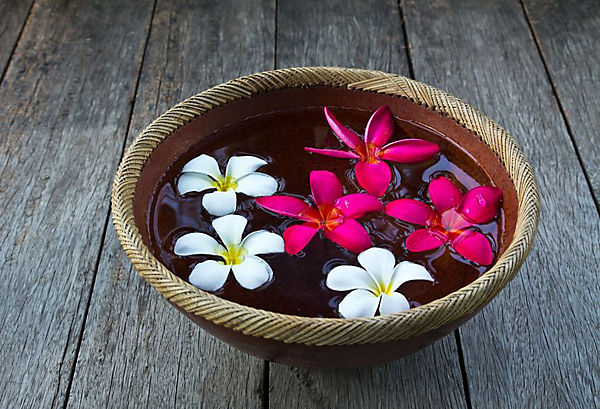Image result for flower in a bowl