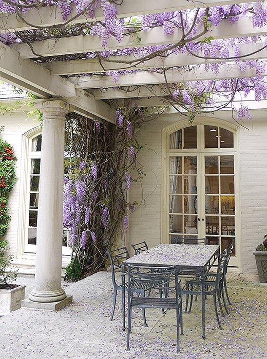 Photo courtesy of Hugh Dargan, ASLA, Dargan Landscape Architects