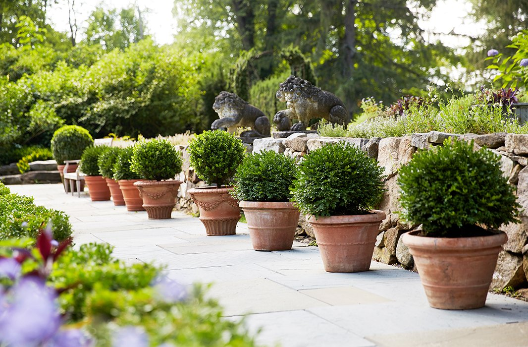 Manicured rows of terracotta planters line the stone paths, while a pair of antique ornamental garden lions stand guard.