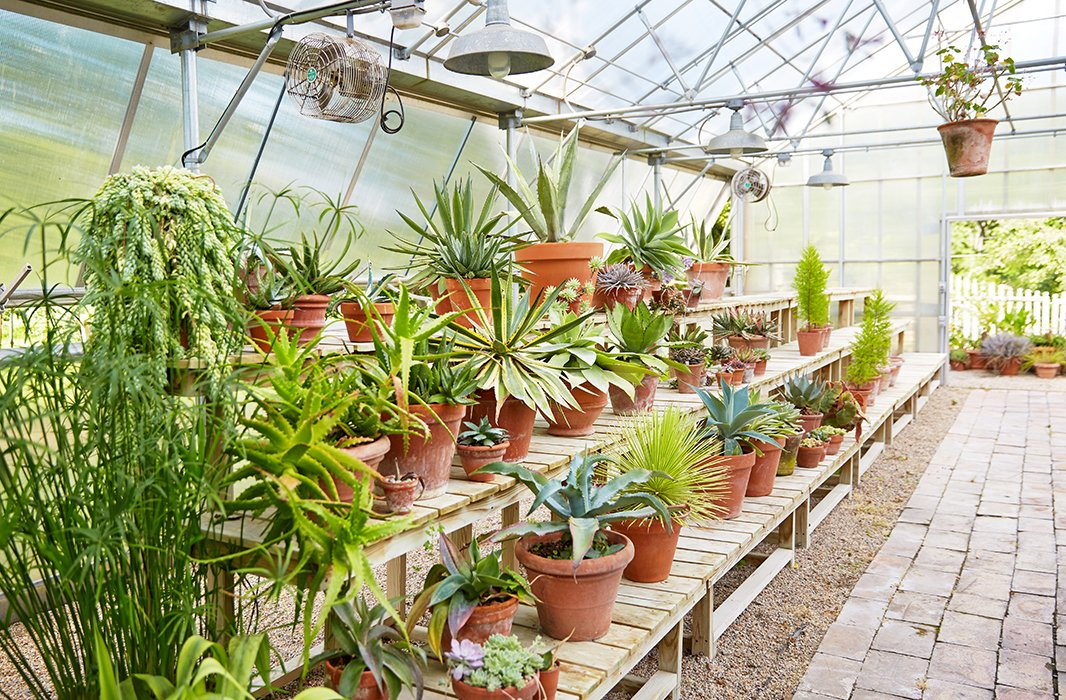 """""""I think of this as the intellectual side of the garden—a place to try something new, to get my hands dirty while I experiment,"""" writes Bunny in her book. Shegleefullyspendshours in the greenhouse year-round;even during the cold months it'sscented with jasmine and orange blossoms."""