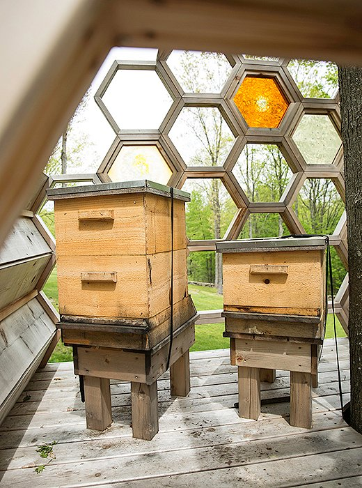 Not only is the elevated bee house an intriguing focal point, it also keeps the hives safe from bears.