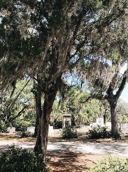 The meandering paths of Bonaventure Cemetery make for a relaxing afternoon ramble. Photo by @livelikeitsthewknd.