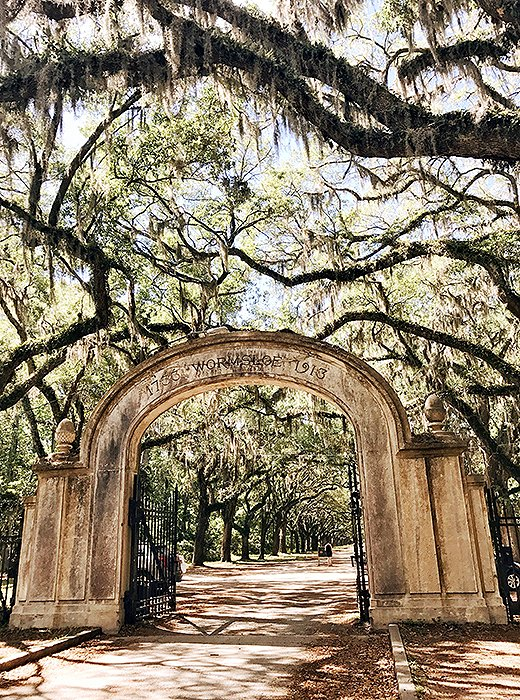 A former plantation, Wormsloe now plays host to a museum, cultural events, and a scenic nature trail. Photo by @livelikeitsthewknd.