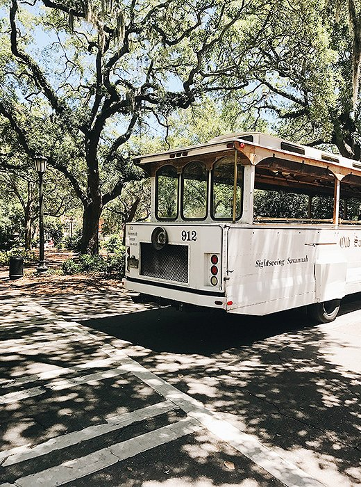 Hop on a trolley tour for a charmingly old-school way to see the city. Photo by @livelikeitsthewknd.