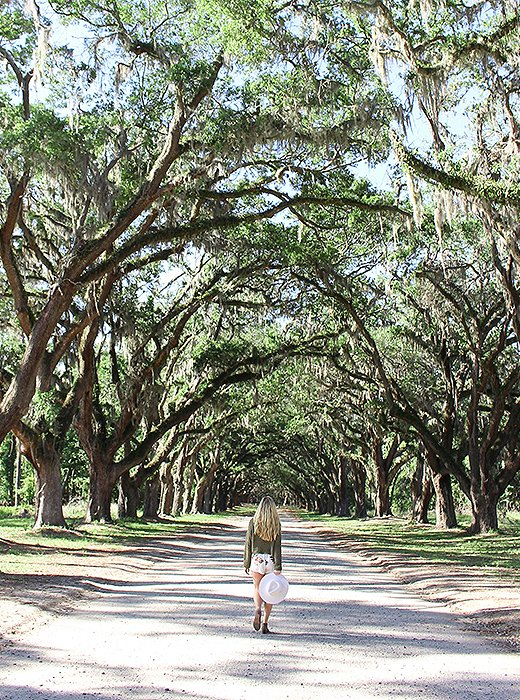 Michelle strolls beneath a canopy of live oak trees at the Wormsloe Historic Site. Photo by @livelikeitsthewknd.