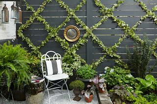 Outdoor Spaces Ideas Part - 41: Photo By Manuel Rodriguez
