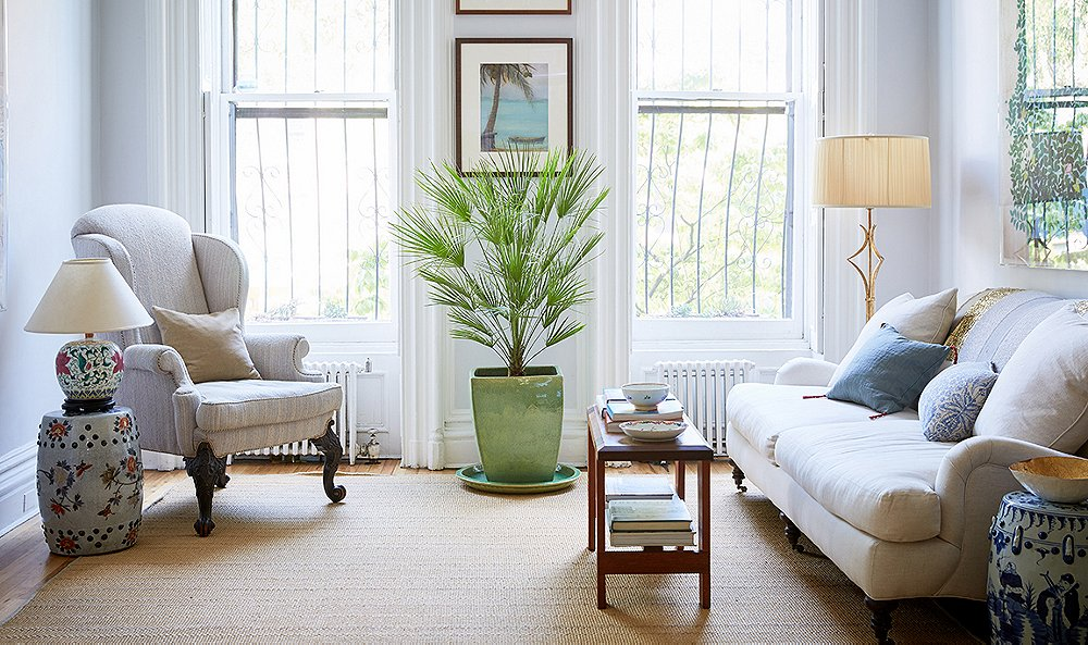 8 Lessons Our Editor Learned About Living With Indoor Plants