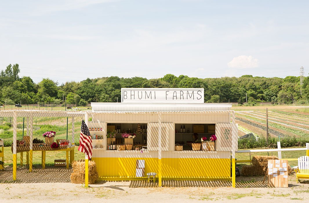The Bhumi Farms stand is located on Pantiago Road in Amagansett, NY.