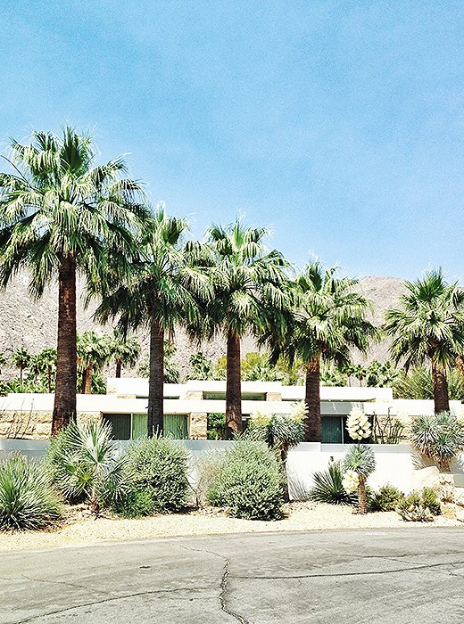 Midcentury buildings punctuate Palm Springs' sprawling desert landscape. Photo by Kelly Lack.