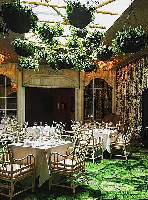 The Caribbean Room in the revamped Pontchartrain Hotel is the talk of the town thanks to its star-chef-helmed menu, palm-laden interiors, and lush murals preserved as a nod to its former famed incarnation. Photo courtesy of the Caribbean Room.