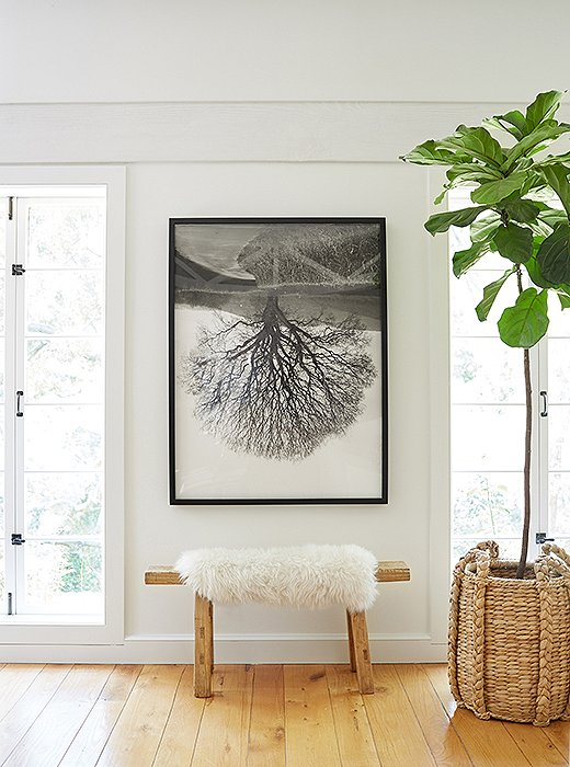 """I love to decorate with natural textures, neutral colors, art, and handmade objects, and those elements are all represented in the new living room,"" Jenni says. This vignette—with its sheepskin-topped wooden bench, fiddle-leaf fig tree, and original art—incorporates all her favorite things."