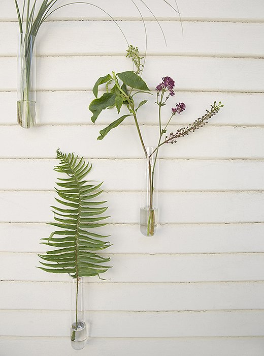 A fern leaf, a sprig of pokeweed (a favorite of Whitney's), and a few strands of ornamental grass are sculptural still lifes along a porch wall.