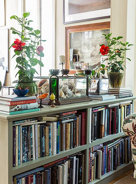 "The author describes her less formal living space, which incorporates her office, as ""sort of vagabond/World of Interiors. It is layered to the teeth. I've got all the crazy things I've collected on my travels from African baskets and birds' nests to suzanis I bought in Kabul and lots of pieces of French faience pottery. There are seashells and tortoiseshells, avian taxidermy, and lots of maps, books, and photographs taken by friends—mostly of the natural world."""