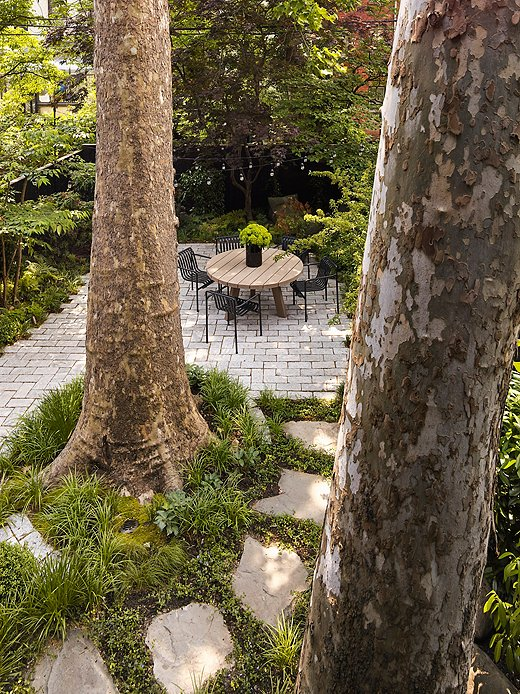 The true showstoppers of the garden are the pair of London plane trees, which Olivia believes are more than a century old. When she and the team at Brook Landscape were designing the backyard, the trees served as their guiding lights.