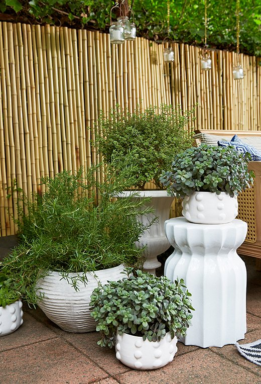 Day arranged various groupings of planters and urns in varying shapes, sizes, and heights throughout the backyard, including white-on-white clusters that are instant standouts.
