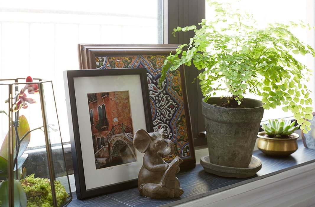 The windowsill has become a revolving showcase for Ari's travel photography and finds as well as a mini indoor garden for lush greenery. Floor tiles, cut to size, were placed atop the sill.