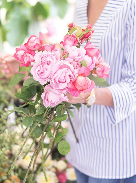 Garden roses are a farmers'-market staple.