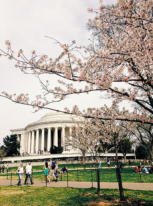 While DC's spring cherry blossoms are a major draw, the city offers plenty of sights year-round. Photo by @reema_desai.