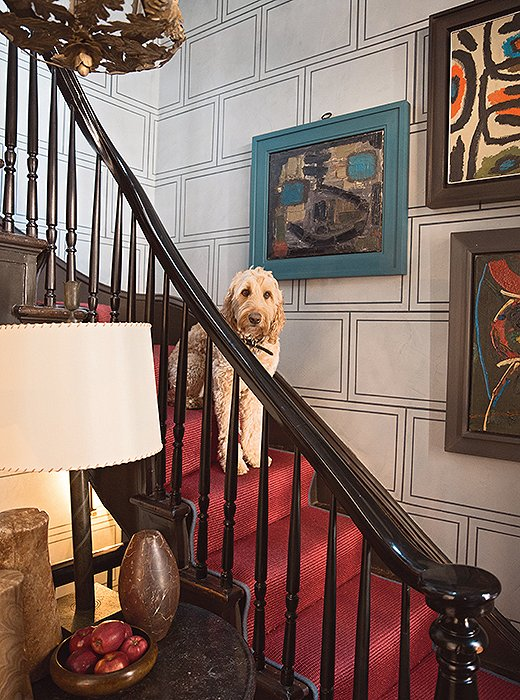 "Sailor the labradoodle poses on the staircase of designer Stephen Gambrel's NYC town house. ""It is covered in red sisal, which is good for traction and not too precious for muddy paws,"" notes Susanna."