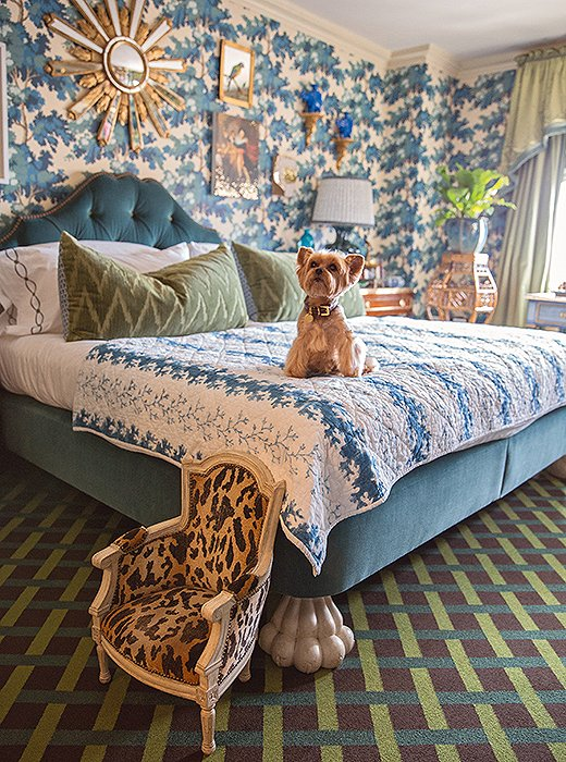 "Writes designer Alex Papachristidis of his beloved Yorkie, ""Teddy is much loved and pampered by my partner, Scott Nelson, a stylish accessories designer, and me—he is a most important part of our household."""