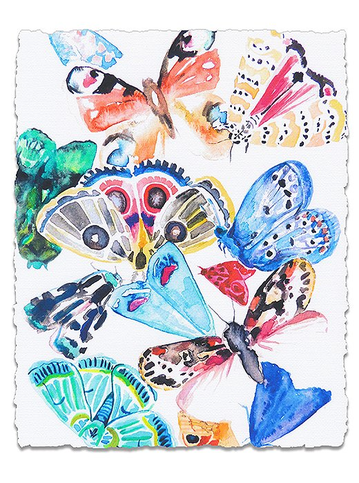 Butterflies I by Hayley Mitchell.