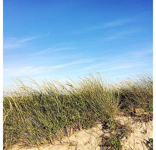 No trip to the Hamptons is complete without a beach day. Photo by @ananewyork.