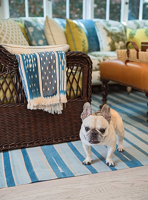 """I like to say our house is really Lily's house and she just lets us live there too,"" writes designer Mark D. Sikes of his beloved Frenchie. An abundance of rugs, such as this antique dhurrie, help keep Lily from slipping on the home's hardwood floors."