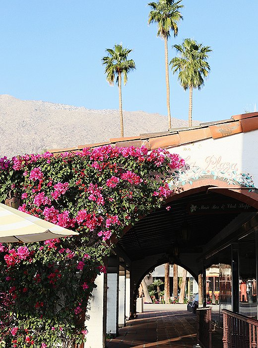 Archways laced with bougainvilleas line the downtown streets.