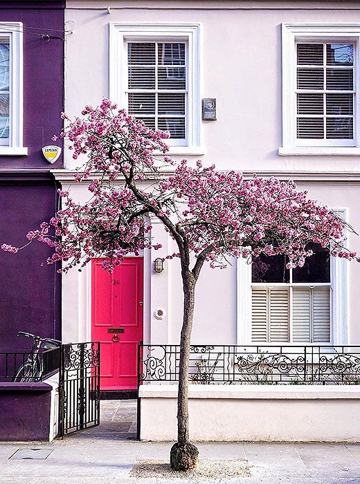 In London, spring is well on its way. Photo courtesy of @a_ontheroad.
