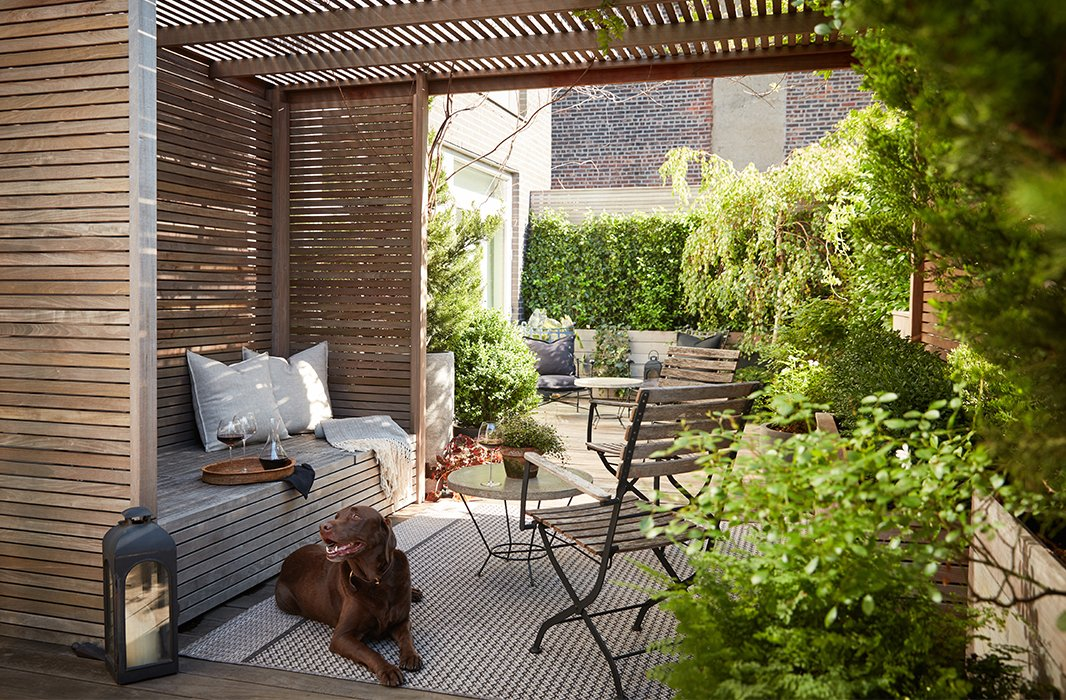"""Brutus lounges on the terrace, which is divided into zones for entertaining as well as for more-private moments. """"It was a combined vision between myself and some friends [Kathryn Kekona and Ty Tan] who helped me select plants and position everything,"""" says Kim."""