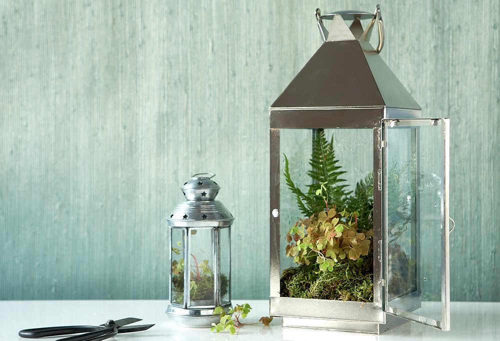 Easy decorating projects terrarium ideas live love home for Decorating outdoor lanterns