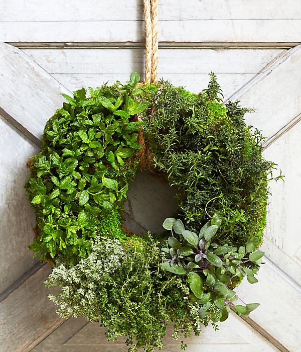 Patio Herb Garden Idea: Herb Garden Ideas