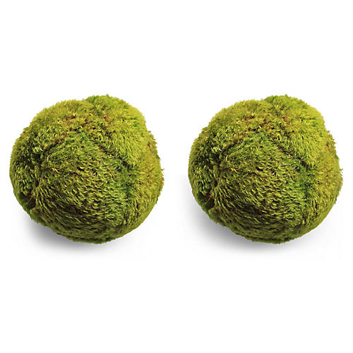 S/2 Mood Moss Balls, Dried