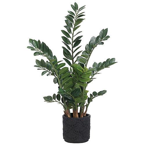 "48"" Zamioculcas Plant, Faux"