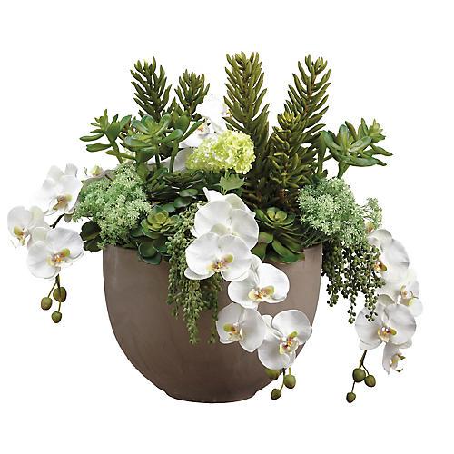 """30"""" Succulent & Orchid Arrangement, Faux"""