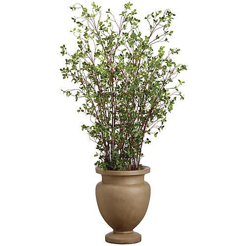 "72"" Mini-Leaf Plant, Faux"
