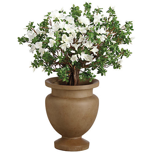 """36"""" Rhododendron Plant, Faux"""
