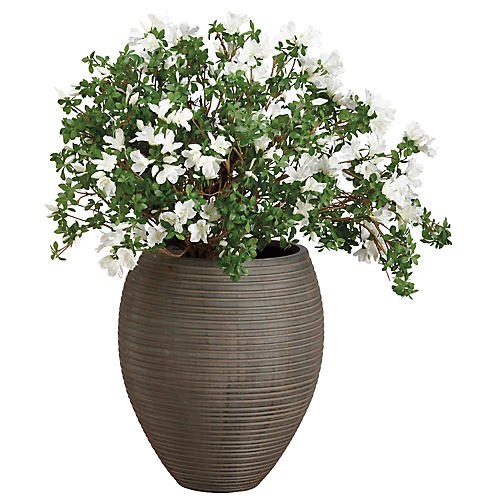 """48"""" Flowering Rhododendron Plant, Faux"""