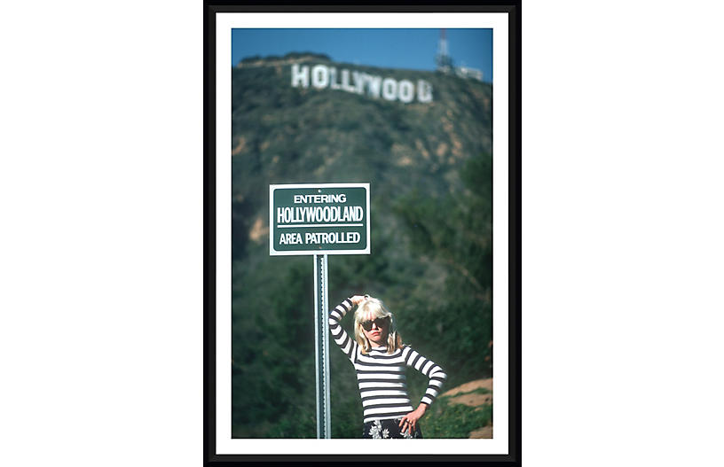 Blondie at the Hollywood Sign