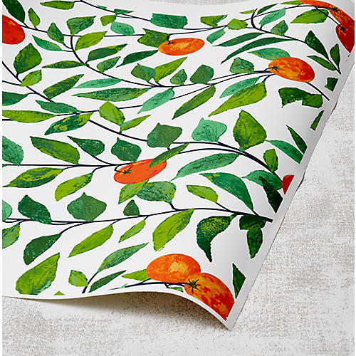 Nathan Turner Orange Crush Wallpaper, White