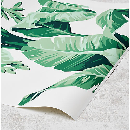 Nathan Turner Pacifico Palm Wallpaper, Ivory/Green