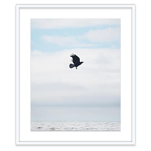 Alex Hoerner, Crow at Sea