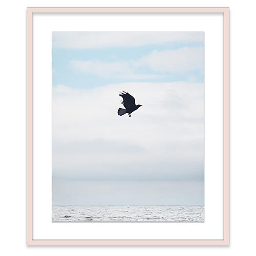 Crow at Sea, Alex Hoerner